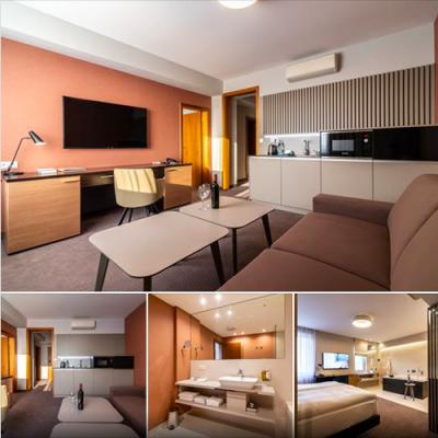 realizacia_hotel_karpatia_izba